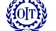 'Organisation International du Travail (OIT)
