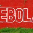 Ebola en rdcongo