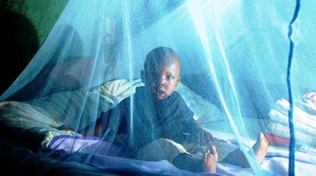 Malaria Paludisme