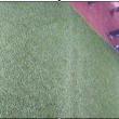 Papy Niango offre la pelouse synthétique