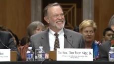 Tibor Peter Nagy Jr, Secrétaire d'Etat adjoint aux Etats-Unis pour les Affaires africaines