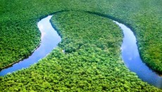 bassin du Congo