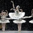 coulisses de l'Opéra de Paris avec le film La danse