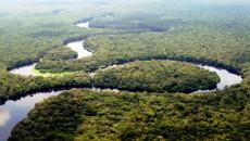 Rivière dans le parc national de la Salonga, Équateur, 2005.